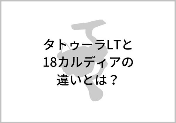 タトゥーラ(スピニングモデル)のイメージ画像