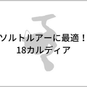 18カルディアのイメージ画像
