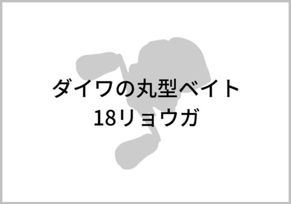 18リョウガのイメージ画像
