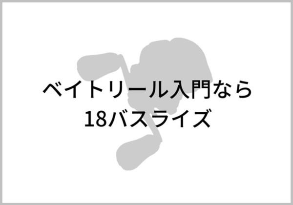 18バスライズのイメージ画像