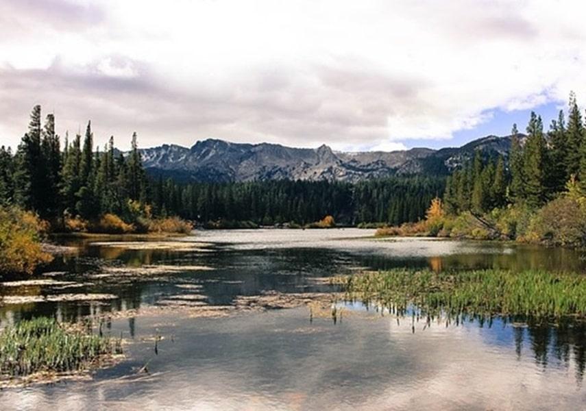 湖にカバーやストラクチャーがある画像