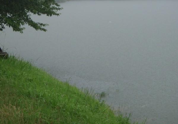 雨のバス釣りの画像
